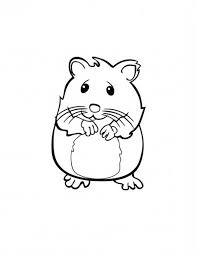 Small Picture Cute Hamster in Guinea Pig Coloring Page Color Luna