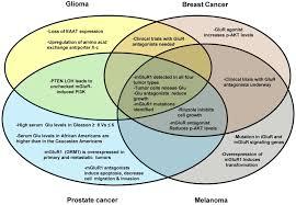 Central Nervous System Vs Peripheral Nervous System Venn Diagram Glur Involvement In Different Cancer Types This Venn Diagram