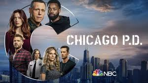 chicago p d season 8 subles