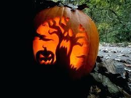 creative best pumpkin designs collection creative pumpkin carving ideas  pumpkin stencils cute faces