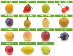バラ 科 の 果物