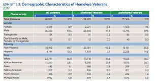 How Many Homeless Veterans Are Living In The U S Metro Us