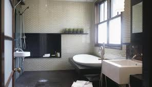 Pretty Walk In Tubs Showers Pictures Inspiration - Bathtub for ...