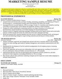 Resume Objectives Example 100 Images Resume Objectives Examples