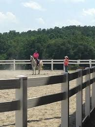 Sc 4 H Horsemanship Camp Registration Clemson University