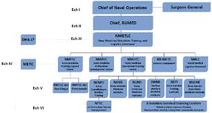 Air Force Sustainment Center Org Chart Nmetlc Organization Chart Download Scientific Diagram