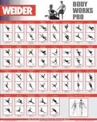 Weider Body Works Pro Chart 9 Best Weider Ultimate Body Works Images Weider Ultimate