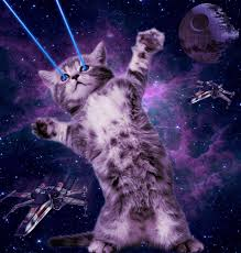 cats shooting lasers out of their eyes. Simple Cats My Daughter Recently Became Fascinated With Space Cats So We Sat Down And  I Showed Her How To Make One First Space Cat Inside Cats Shooting Lasers Out Of Their Eyes
