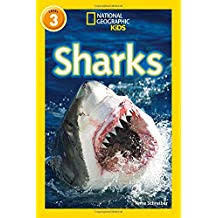 sharks national geographic readers