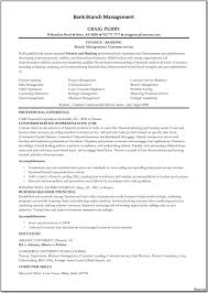 Professional Summary For Resume Janitor Professional Profile100 Summary Resume Sample Profile 60