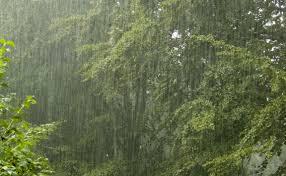 image of rain के लिए चित्र परिणाम
