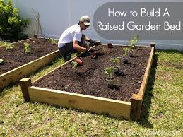 how to make a raised vegetable garden photo 1