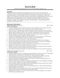 Template Example Executive Resume Nicetobeatyou Tk Senior Management