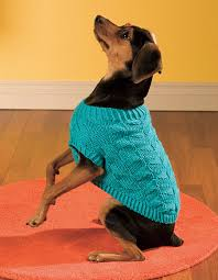 Free Knitted Dog Sweater Patterns Delectable Diagonal Dog Sweater Pattern Knitting Patterns And Crochet