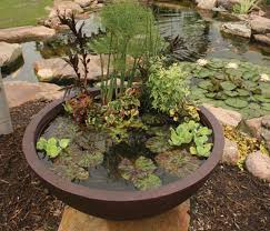 garden pond supplies. Aquascape Pond Supplies: Container Water Garden Filter | Part Number 77005 Learn More About Supplies W