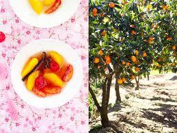 Best 25 Kids Fruit Ideas On Pinterest  Fruit Kabobs Kids Summer Fruit Salad Trees Usa