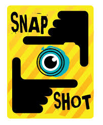 Online Snapshot Snapshot
