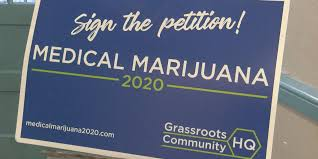 Petition Office Petition With Over 100 000 Signatures To Legalize Medical