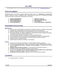 Resume Objectives Entry Level Great Resume Summary Statements