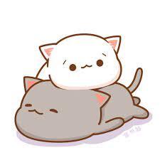 Anime ảnh Chibi Meo Anime ảnh Chibi Avatar Cute - Novocom.top