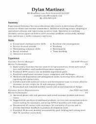 Customer Service Functional Resume Sample Infinite Demoexat Com