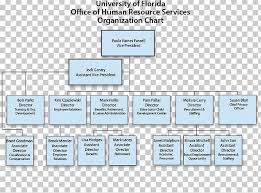 Hr Organizational Chart Organizational Chart Organizational Structure Human Resource