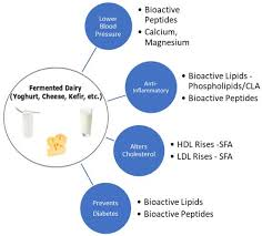 dairy fats and cardiovascular disease