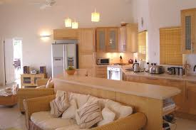 combined kitchen and living room interior kitchen ideas within kitchen living room combo decorating kitchen living