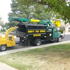photo of terryu0027s tree service los lunas nm united states they can terrys tree service20