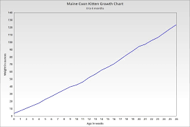 42 Unbiased Growth Chart For Kittens