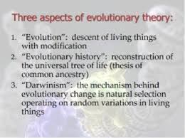 evolutionary timeline of the theory of evolution timelines  info from darwin s journey to the galapagos