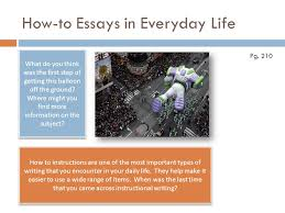 persuasive essay on animal cruelty essay writing service  persuasive essay on animal cruelty jpg