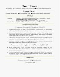 Resume Examples Download Word Floss Papers