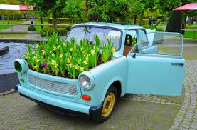 Image result for flowers and car