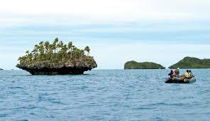 جزر ميكرونيزيا Images?q=tbn:ANd9GcTtXB3mv1aPuR7lbousncG6zMivk6R8EmyO_CCV4h3XfQLugFbc