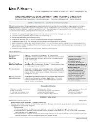 Good Resume Cover Letter Examples Amazing How To Write A Cover Letter Seek Resume Cover Letters Examples New