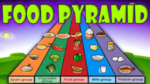 Healthy Food Chart For School Project Nutrition Pyramid