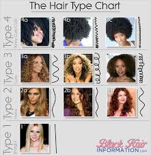 African American Natural Hair Type Chart 5 Reasons The Hair Typing System Is Totally Overrated