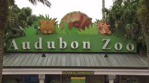 Image result for audubon zoo