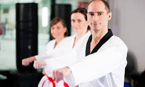 up to 67 off martial arts lessons