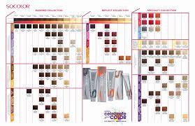 Matrix Color Chart Online Prototypal Matrix Socolor Hair Color Chart Rusk Hair Color