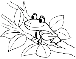 Small Picture Tree Frog Coloring BookFrogPrintable Coloring Pages Free Download