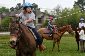 Dream Catcher Stables Humble woman uses horse power to help others Houston Chronicle 40