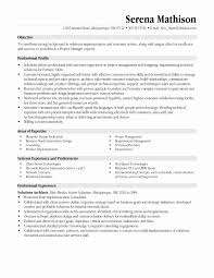 Hr Resume Objective Statements Project Management Resume Sample New It Project Manager Resume 8