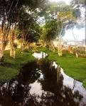 imagem de Piraí do Norte Bahia n-18