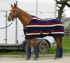 elite fleece rug burdy stripe