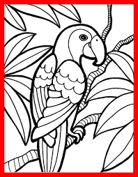 854x1095 incredible jungle bird parrot coloring pages printable for kids