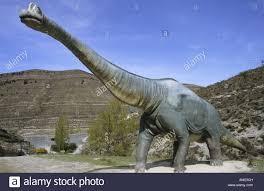 brachiosaurus size life size replica of brachiosaurus dinosaur at valdecevillo site in