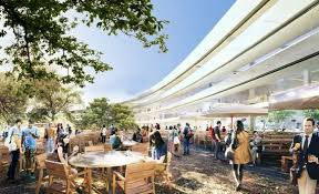 office life will spill into a verdant landscape on both the inside and outside of the ring apple new office