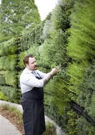 herb garden wall i love the idea of creating a vertical garden